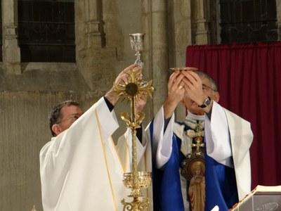 400e anniversaire de la remise de la charte aux 1eres Dames de la Charité_Châtillon (24).JPG